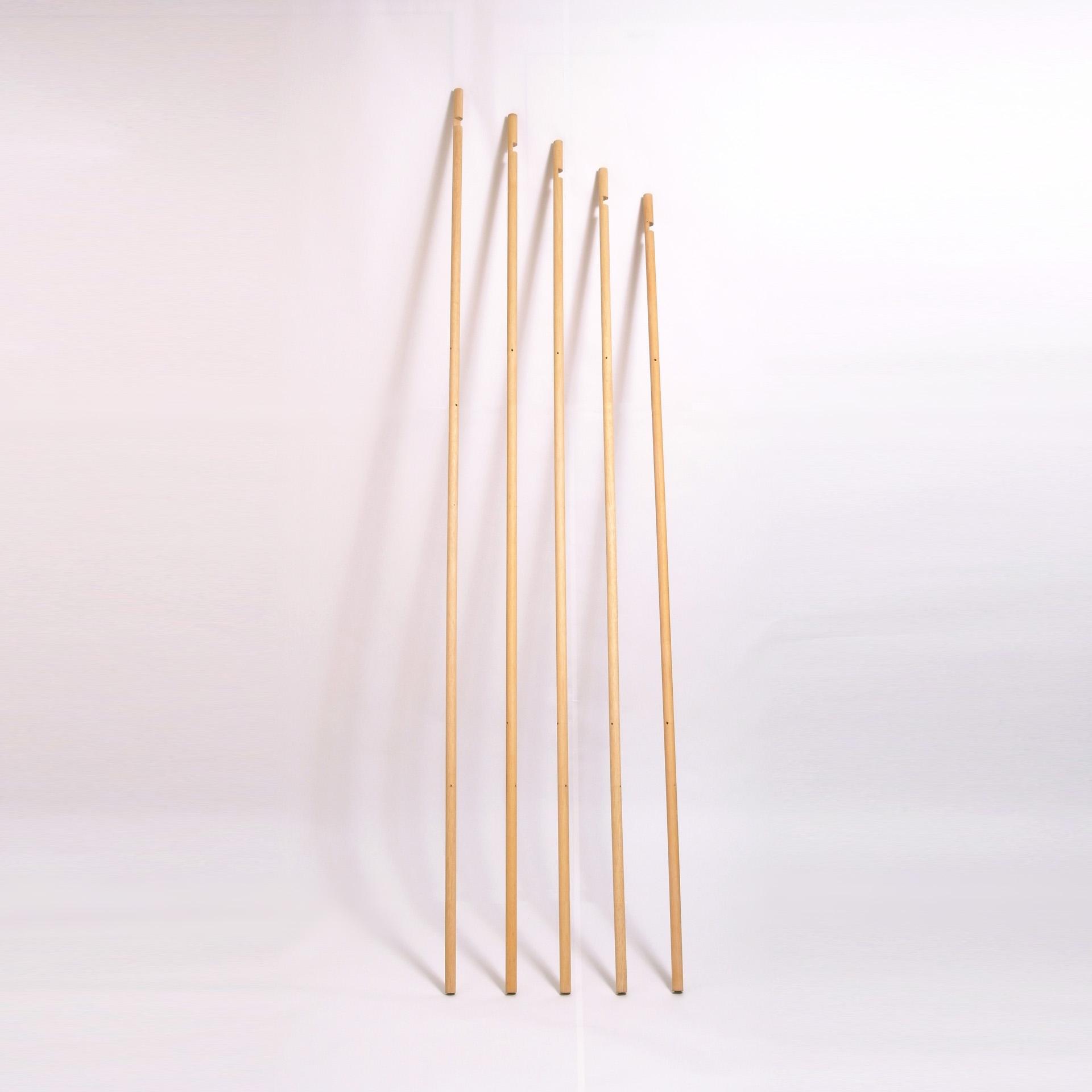 poles-1